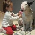 Ecco come questo cane si lascia visitare dalla bambina