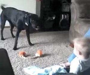 Il cane e questo bambino si divertono un mondo