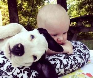 Il primo anno insieme di un bambino ed un cane dolcissimo