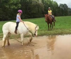 Il pony decide di giocare nel fango mentre una bambina lo cavalca