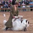 Addestra i cavalli con una tecnica speciale e suggestiva