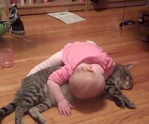 Questa è forse la gatta più paziente che ci sia, ecco cosa fa!