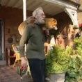 Un uomo salva una volpe, ecco la loro vita insieme dopo alcuni anni