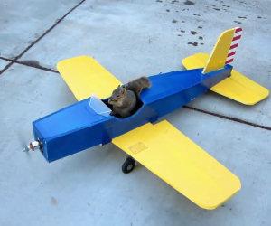 Le avventure dello scoiattolo volante
