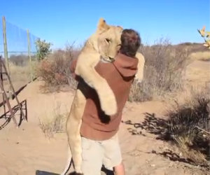 Leone abbraccia il suo padrone