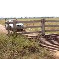 Sembra un normale cancello di legno, ma quando l'auto si avvicina...