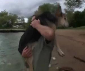 Al cane resta poco da vivere, ecco cosa fa il padrone per lui ogni giorno