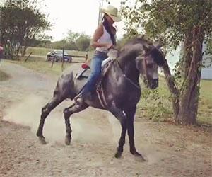 Una ragazza ed il suo cavallo si scatenano in una danza folkloristica
