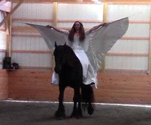 Questa ragazza ed il suo cavallo provano il numero per la prima volta