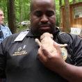 Degli angeli salvano 526 cani da un allevamento lager