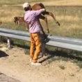 Trovano un puledro che piange per strada e lo salvano