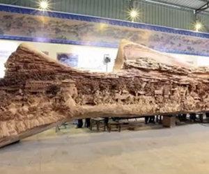 Da lontano sembra un tronco ma in realtà è qualcosa di incredibile