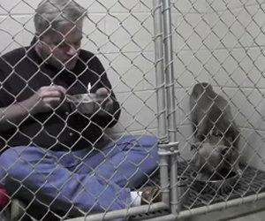 Si chiude nella gabbia con un pit bull malridotto, ecco perchè...