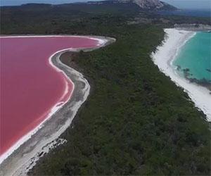 Ecco il meraviglioso lago rosa di un'isola dell'Atlantico