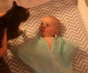 Entra nella stanza col gatto in braccio, ecco la reazione della bimba