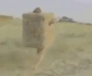 Uomo si trasforma in balla di fieno