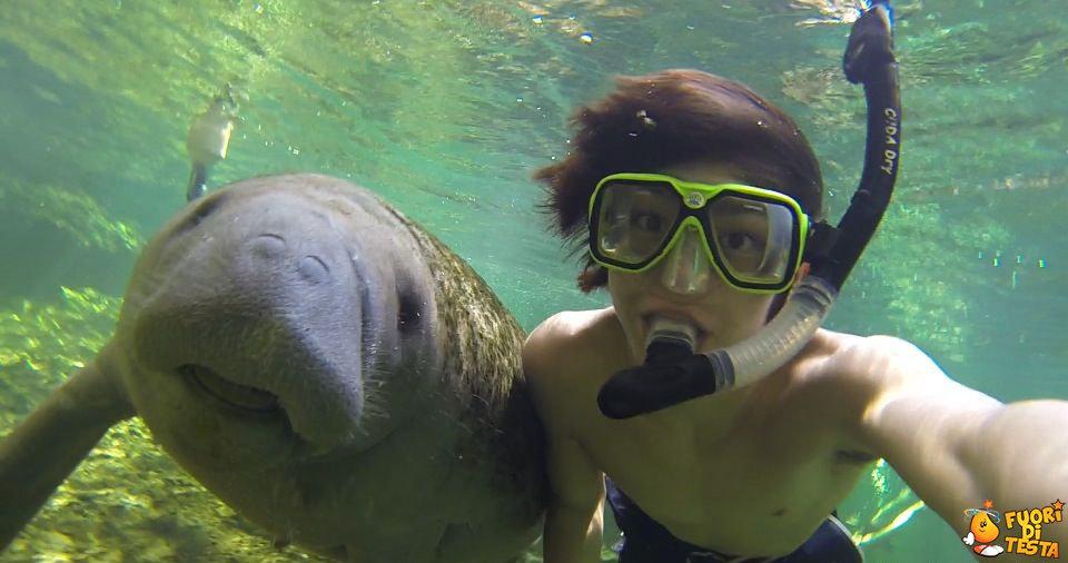 Un selfie sottomarino