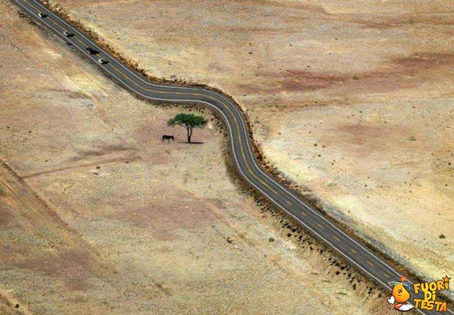 Rispettare la natura