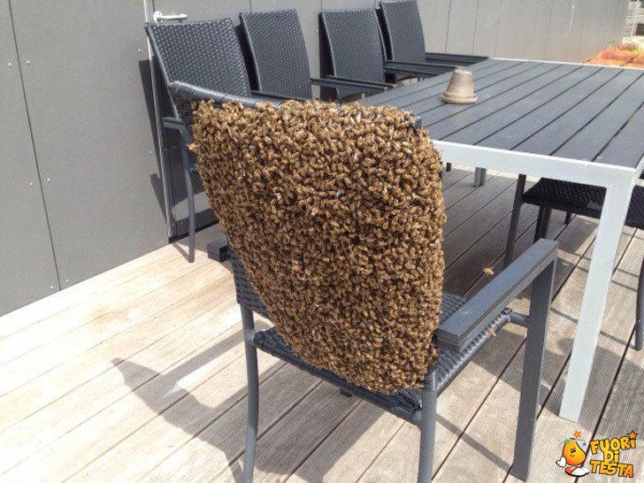 Vi sedereste qui?