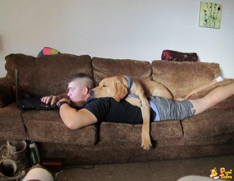 Cuscino decisamente comodo