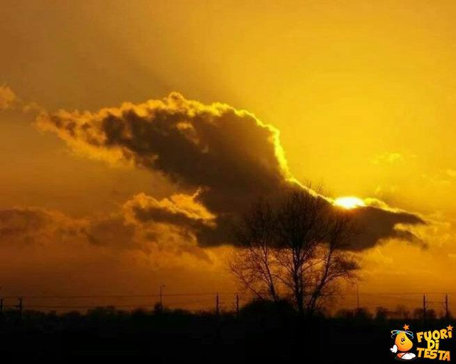 La nuvola a forma di uccello