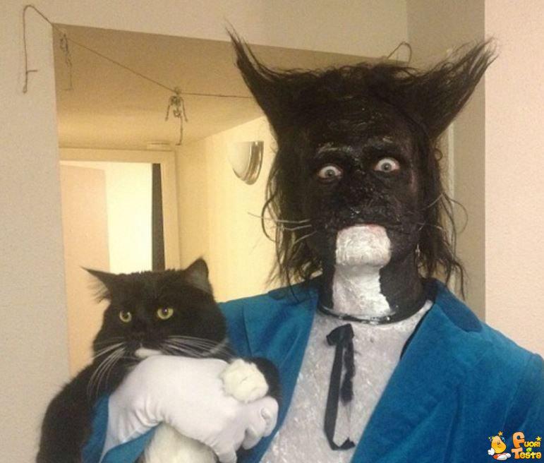 Vestirsi dal proprio gatto