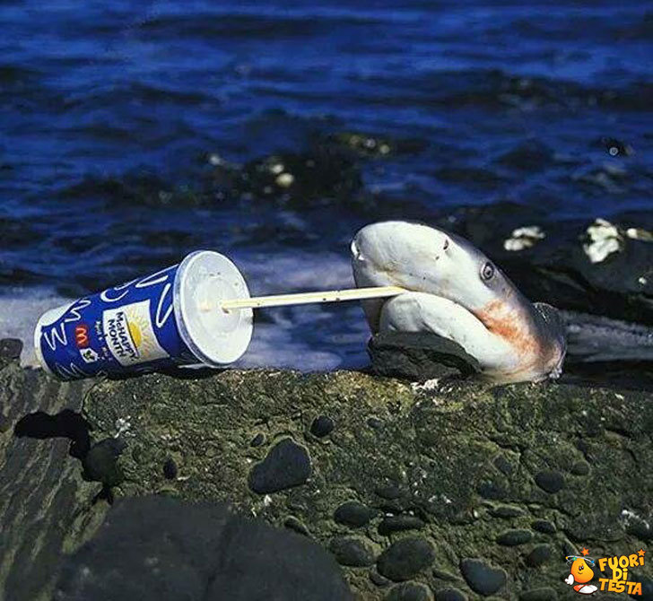 Aveva sete...