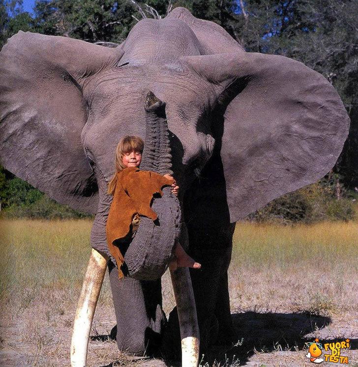 Un amico gigante