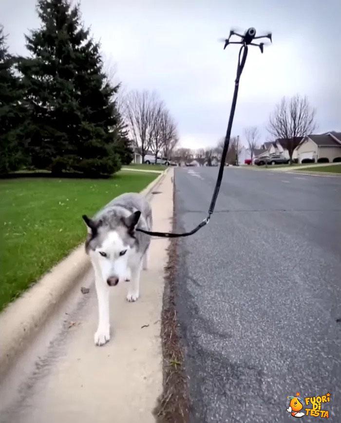Drone porta in giro il cane