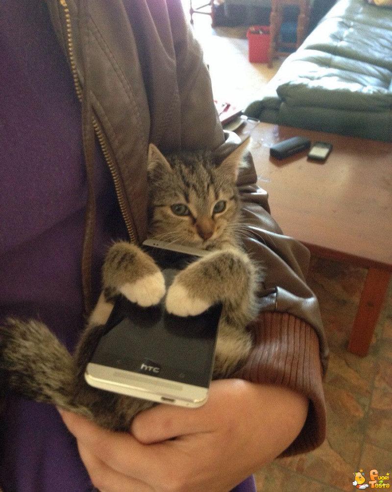 Non toccate il mio smartphone