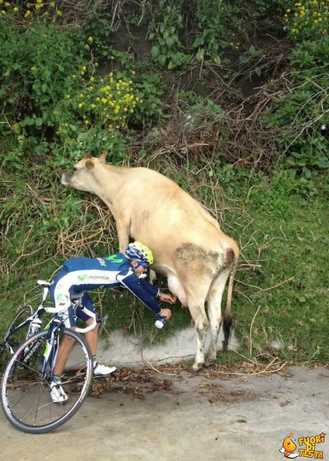 [Immagine: 620x867xciclista-ritrova-le-energie.jpg...._qkoIC.jpg]