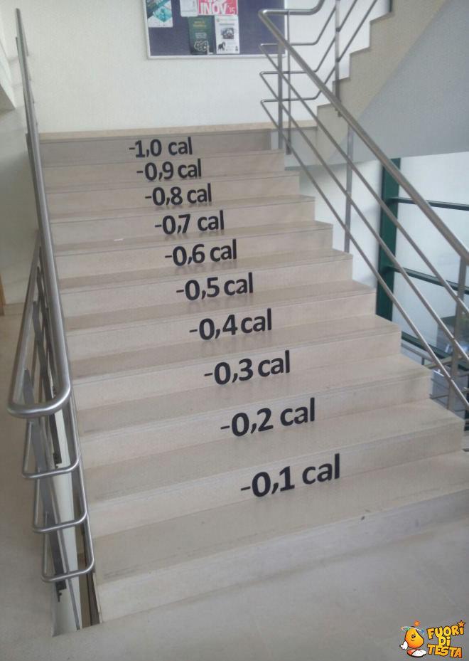 La scala delle calorie