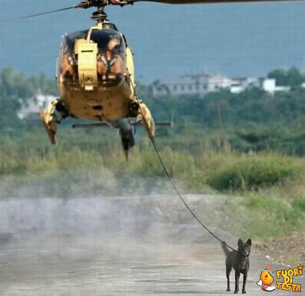 A passeggio con l'elicottero