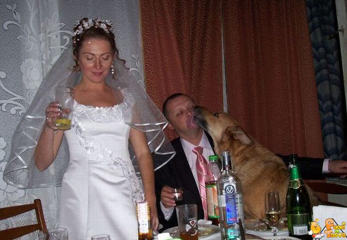 Adesso puoi baciare lo sposo