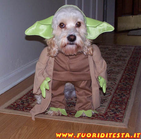 Cane Yoda