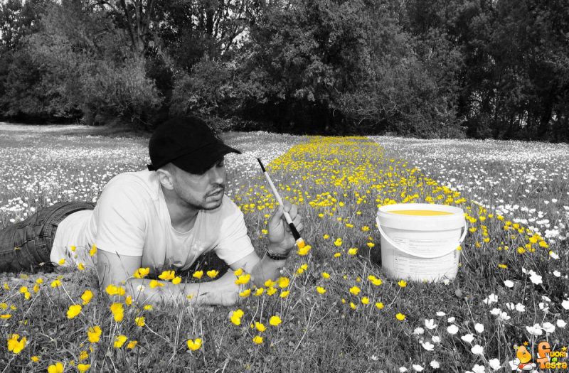 Dipingendo i fiori