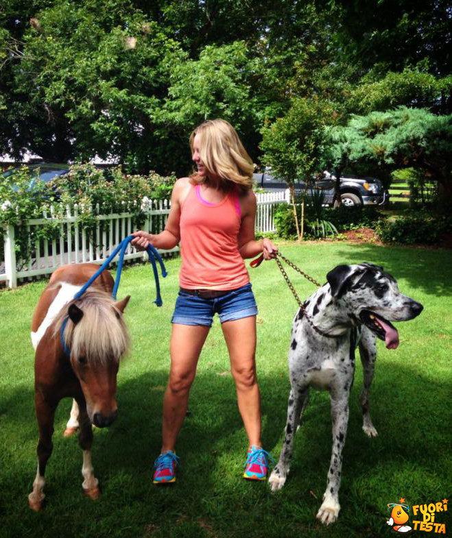 E più alto un pony o un cane?