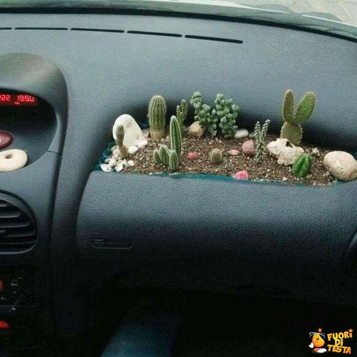 Giardinetto da auto