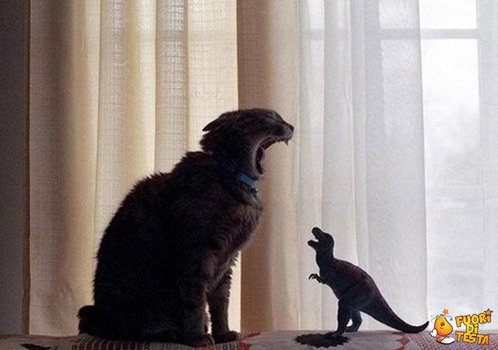 Il gatto e il dinosauro