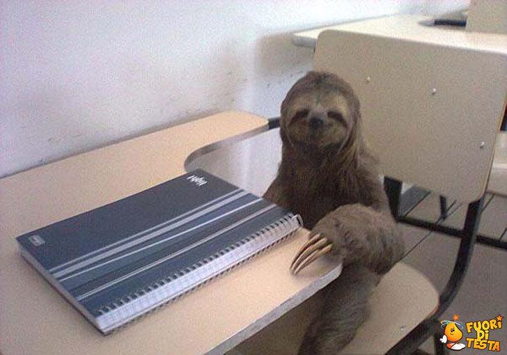 Il suo primo giorno di scuola
