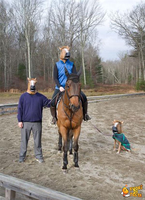 Loro amano i cavalli