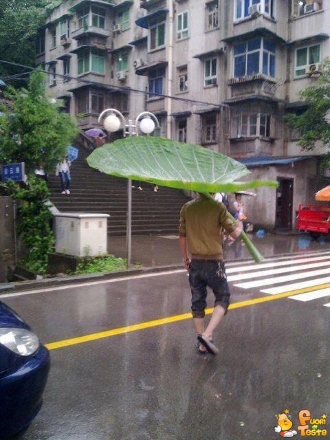 Ombrelli? Roba inutile!
