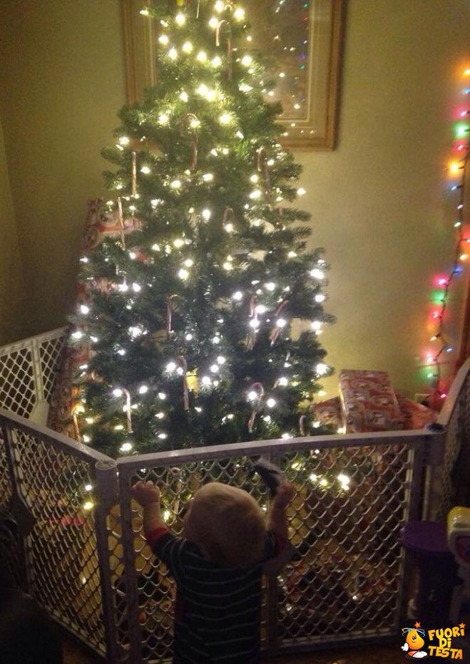 Proteggere un albero di Natale