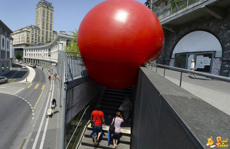 Qualcuno ha visto la mia palla rossa?