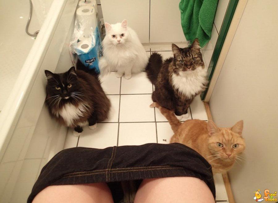 Sentirsi osservati in bagno