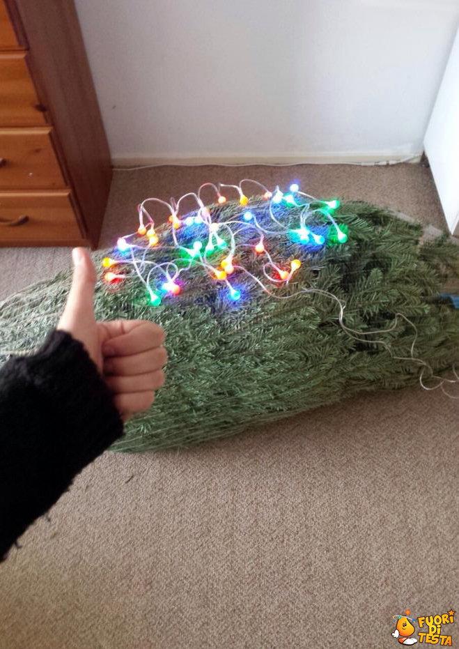 Sono pigro, ecco il mio albero
