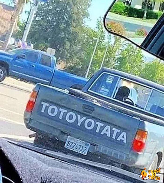 Totoyotata