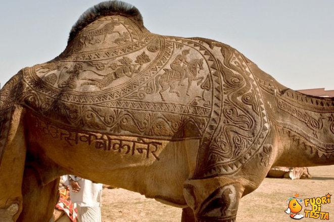 Un cammello decorato