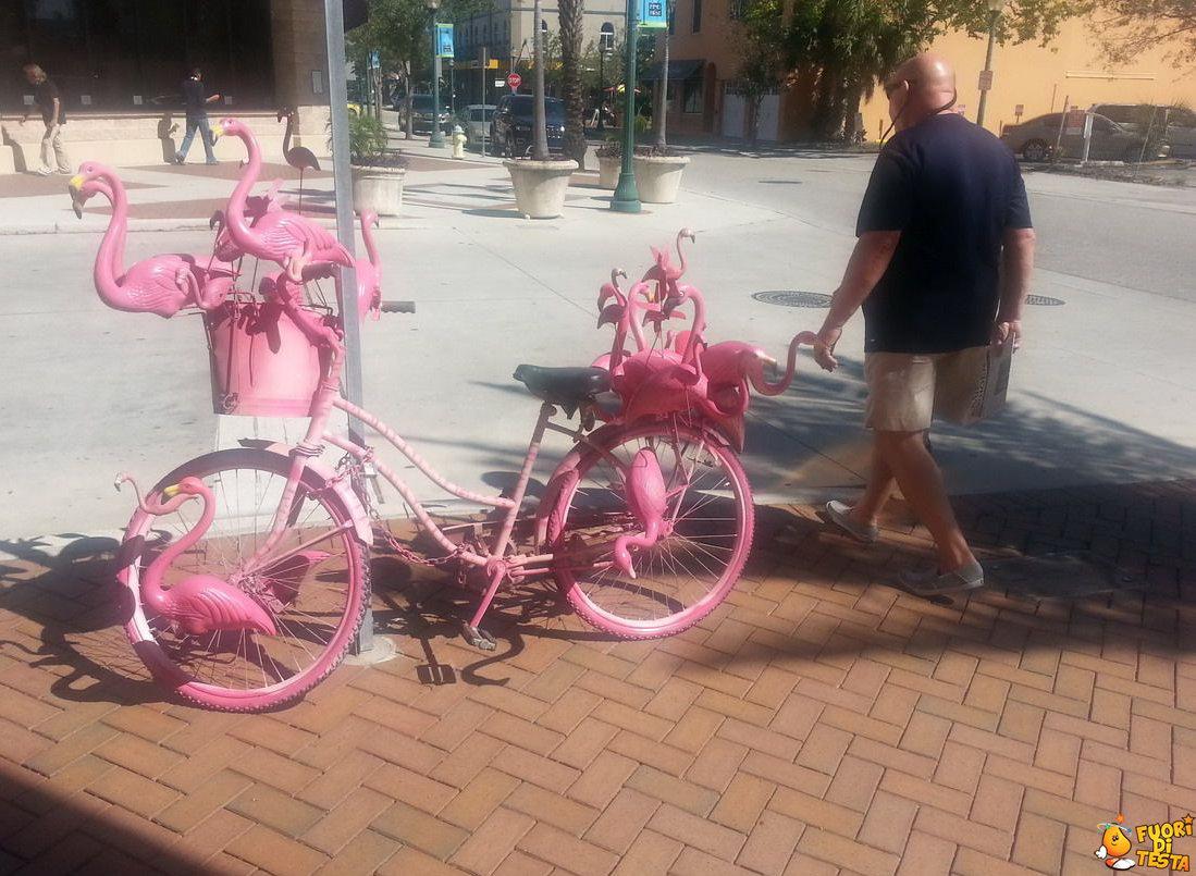 Una bicicletta molto... rosa