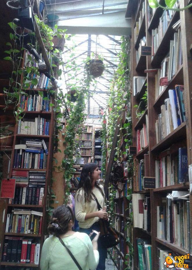 Una fantastica libreria